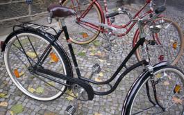 Seitenansicht zweier Fahrräder